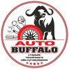 СТО Auto Buffalo фото 1